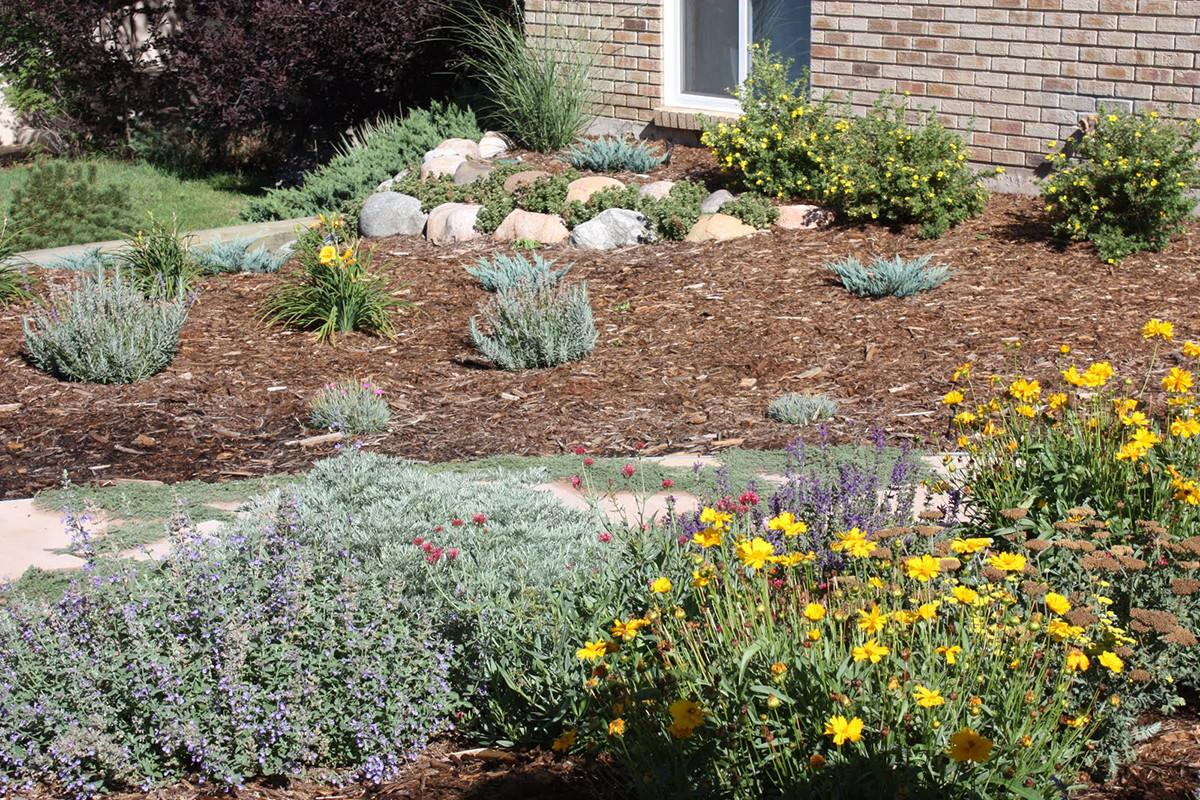 100 Backyard Xeriscape Ideas Best Modern