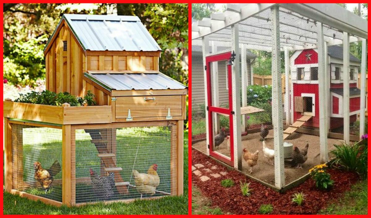 100 Chicken Coop Plans Diy Cozy Home