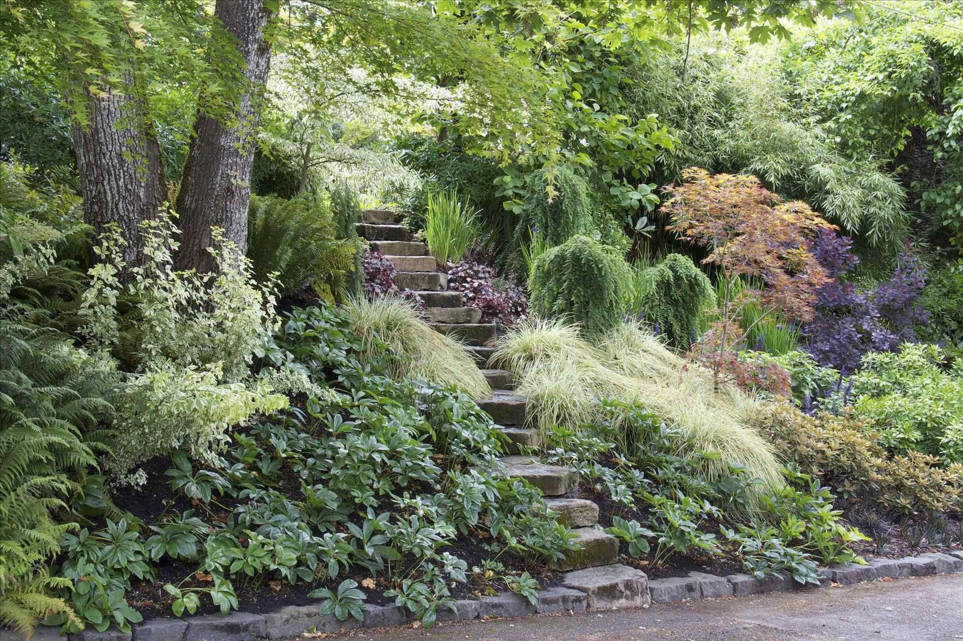 100 Diy Front Yard Landscaping Ideas Easy