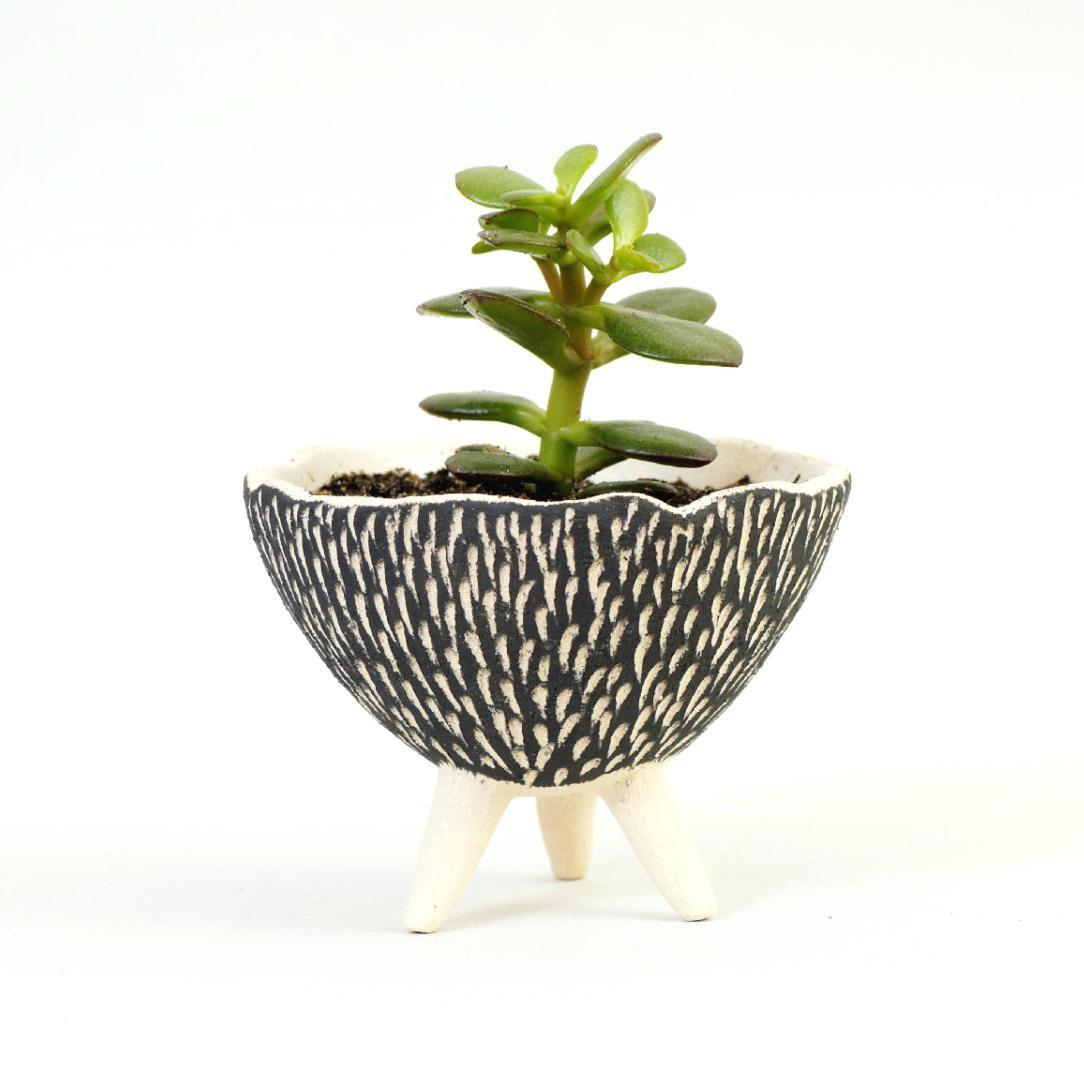 100 Modern Hanging Planters Compare Prices Wall