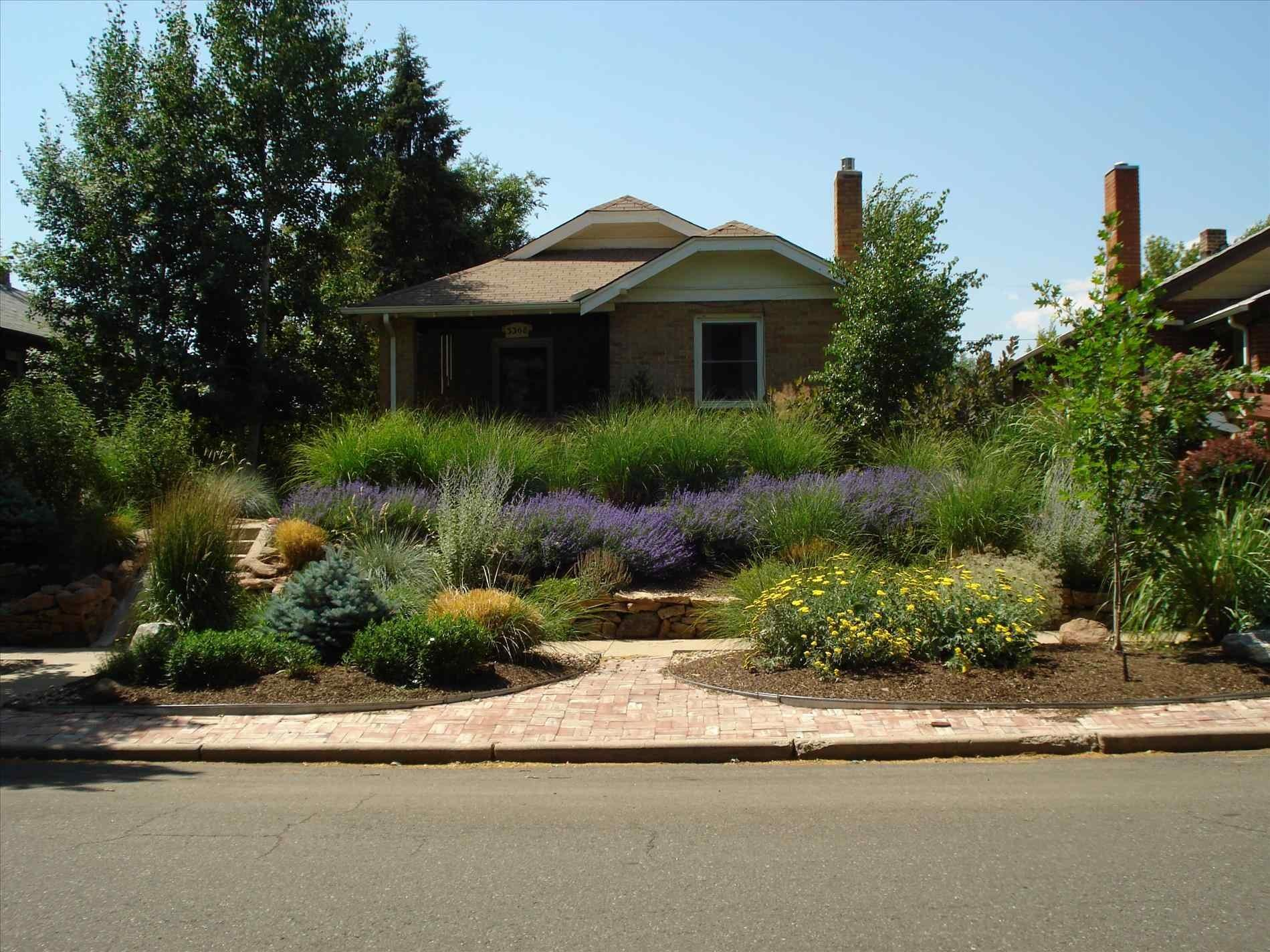 100 Xeriscape Backyard Dry Stream Bed U0026