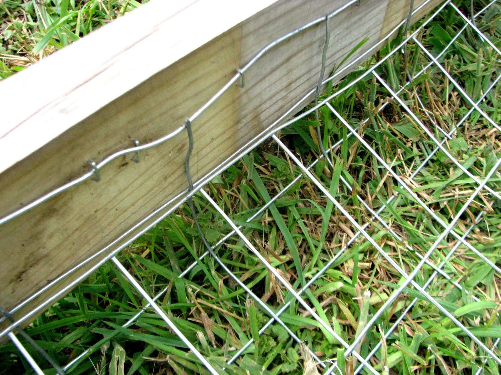 1000 Ideas Dog Proof Fence