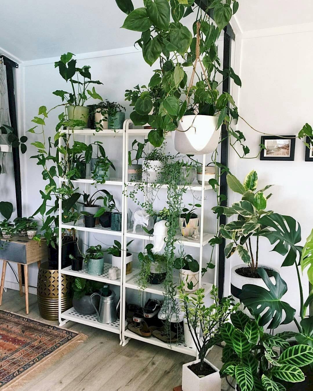 179 Diy Indoor Plant Display Ideas Borderline