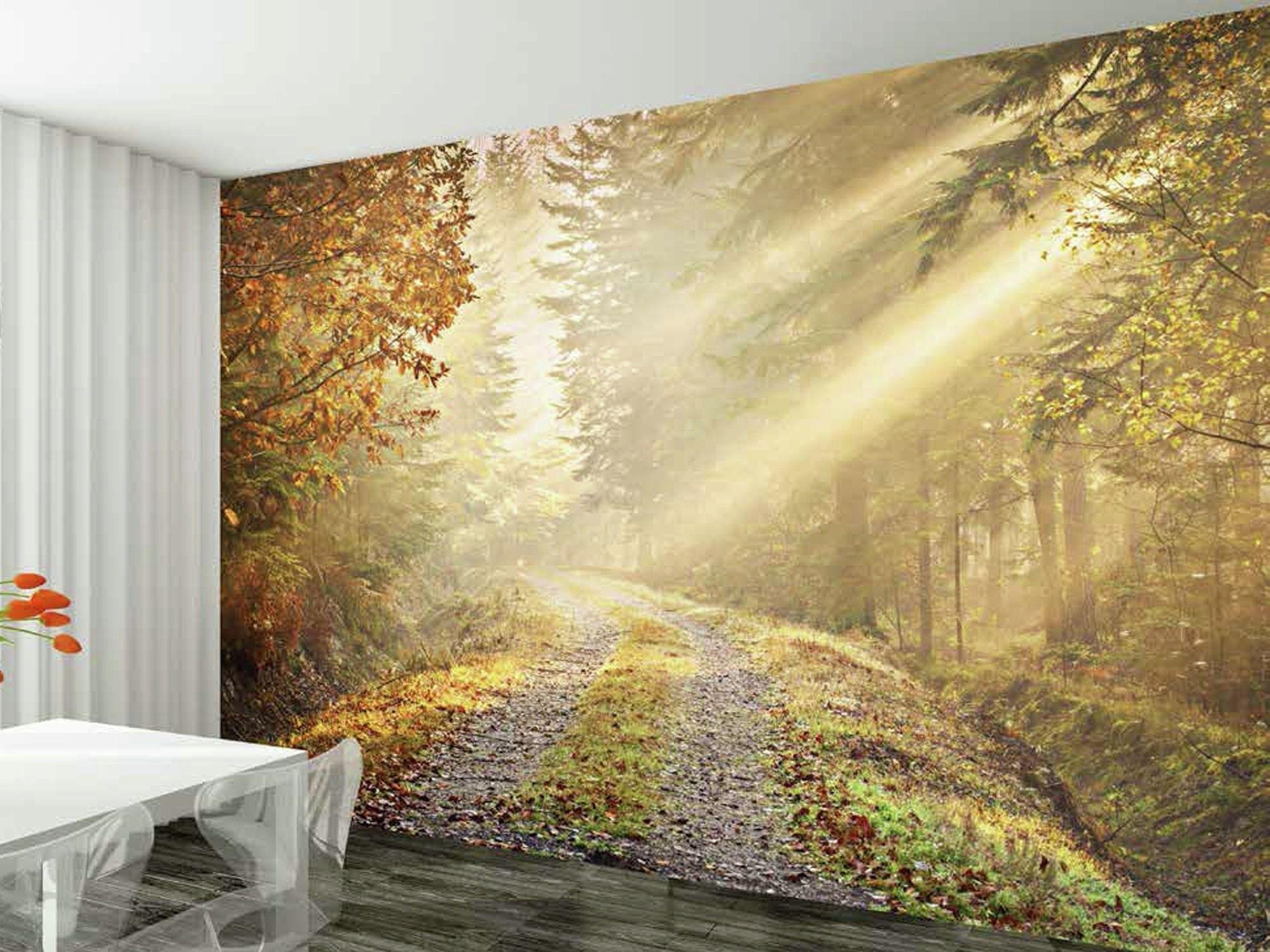 1wall Winter Forest Road Wall Mural