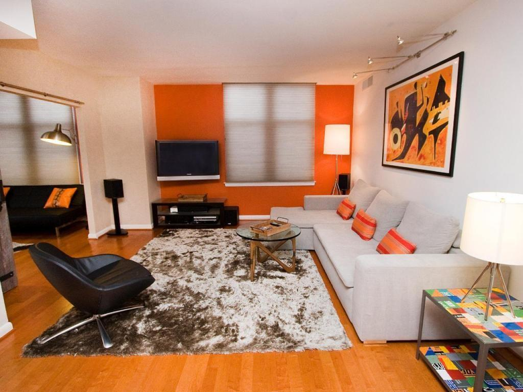 Adorable Printed Rug Orange Accent Wall Using Soft