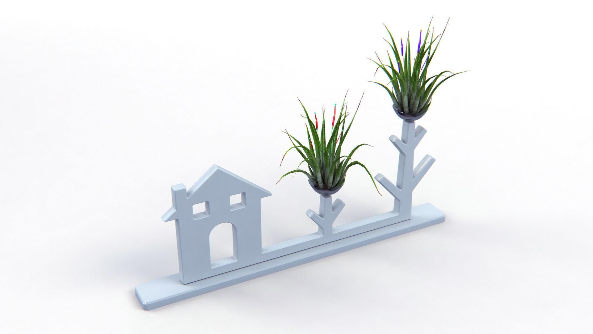 Air Plant Decor Model Max Cgtrader