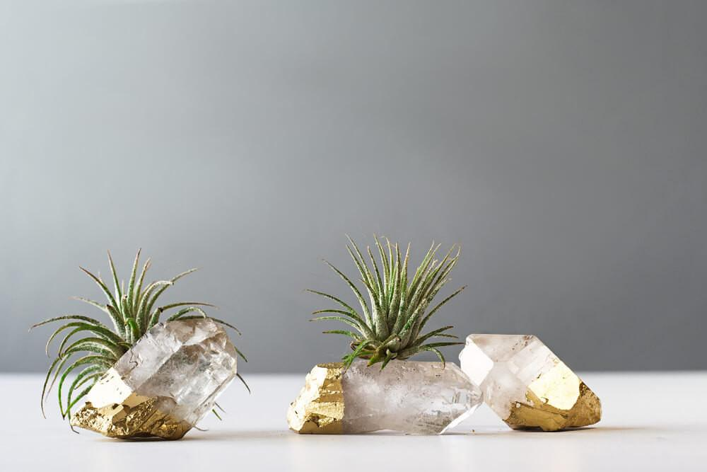 Air Plant Gold Dipped Quartz Crystal Desk Accessories Best