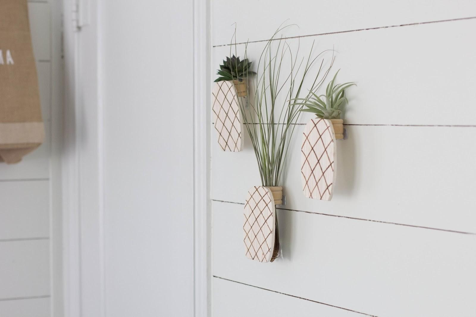 Always Rooney Pineapple Air Plant Holder Diy