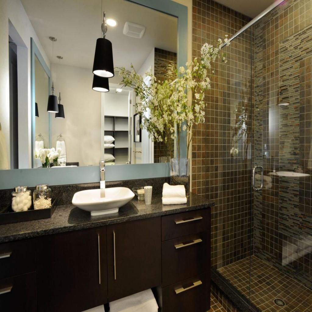 Amazing Addition Attractive Modern Style Bathrooms