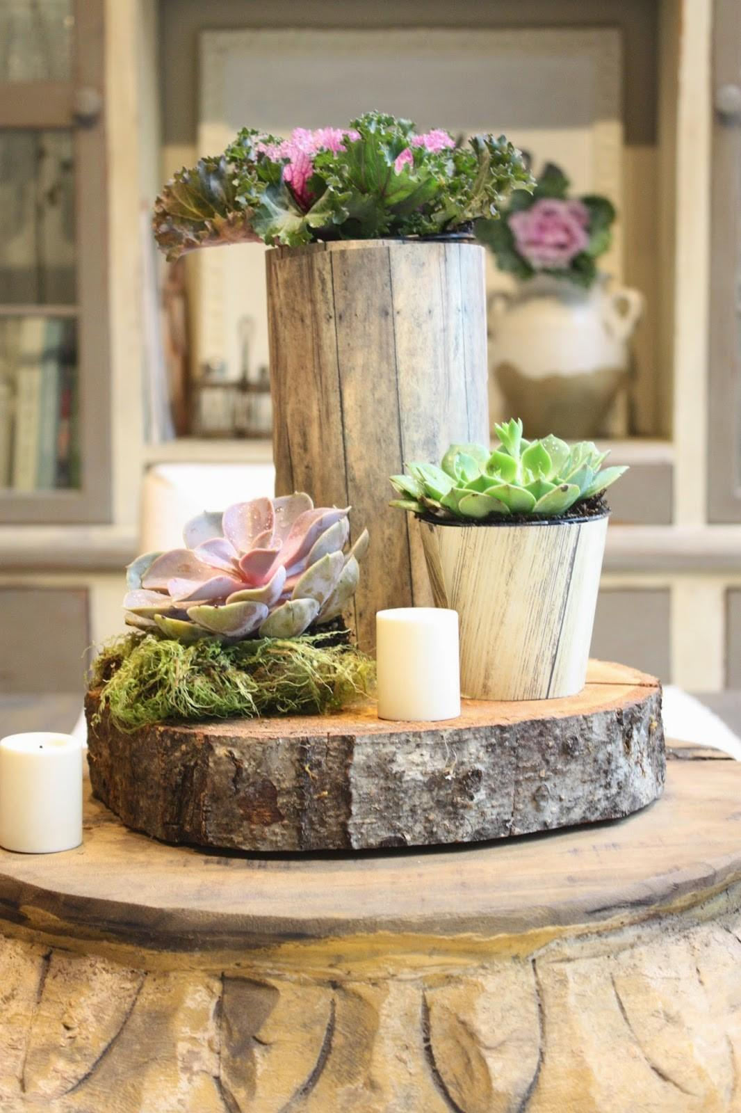 Amazing Things Can Tree Stumps