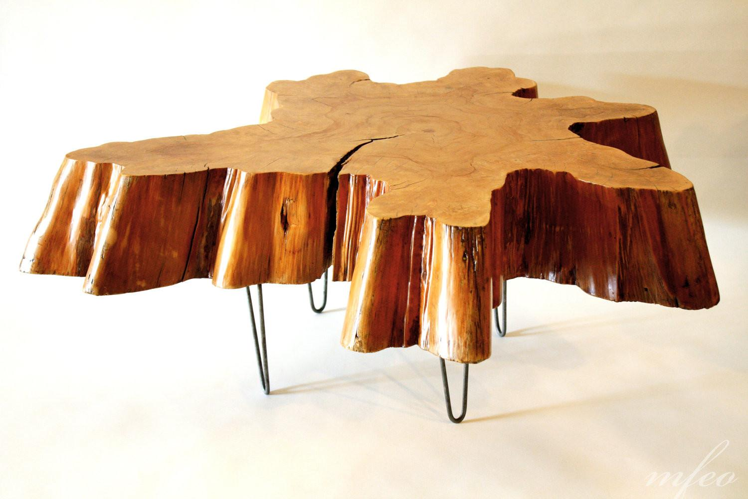 Amazing Tree Trunk Coffee Table Design Ideas