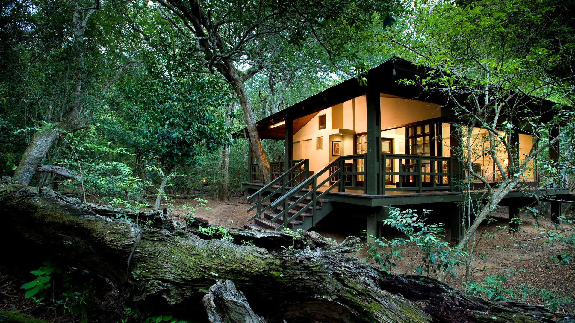 Andbeyond Phinda Forest Lodge Private Game Reserve