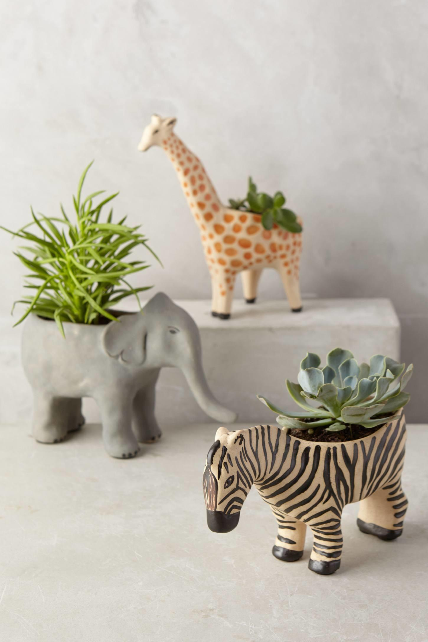 Animal Succulent Planter Home Decorating Trends Homedit