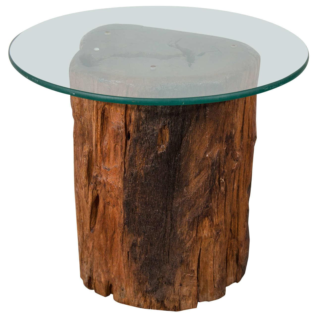 Antique Petrified Tree Trunk Side Table Glass Top