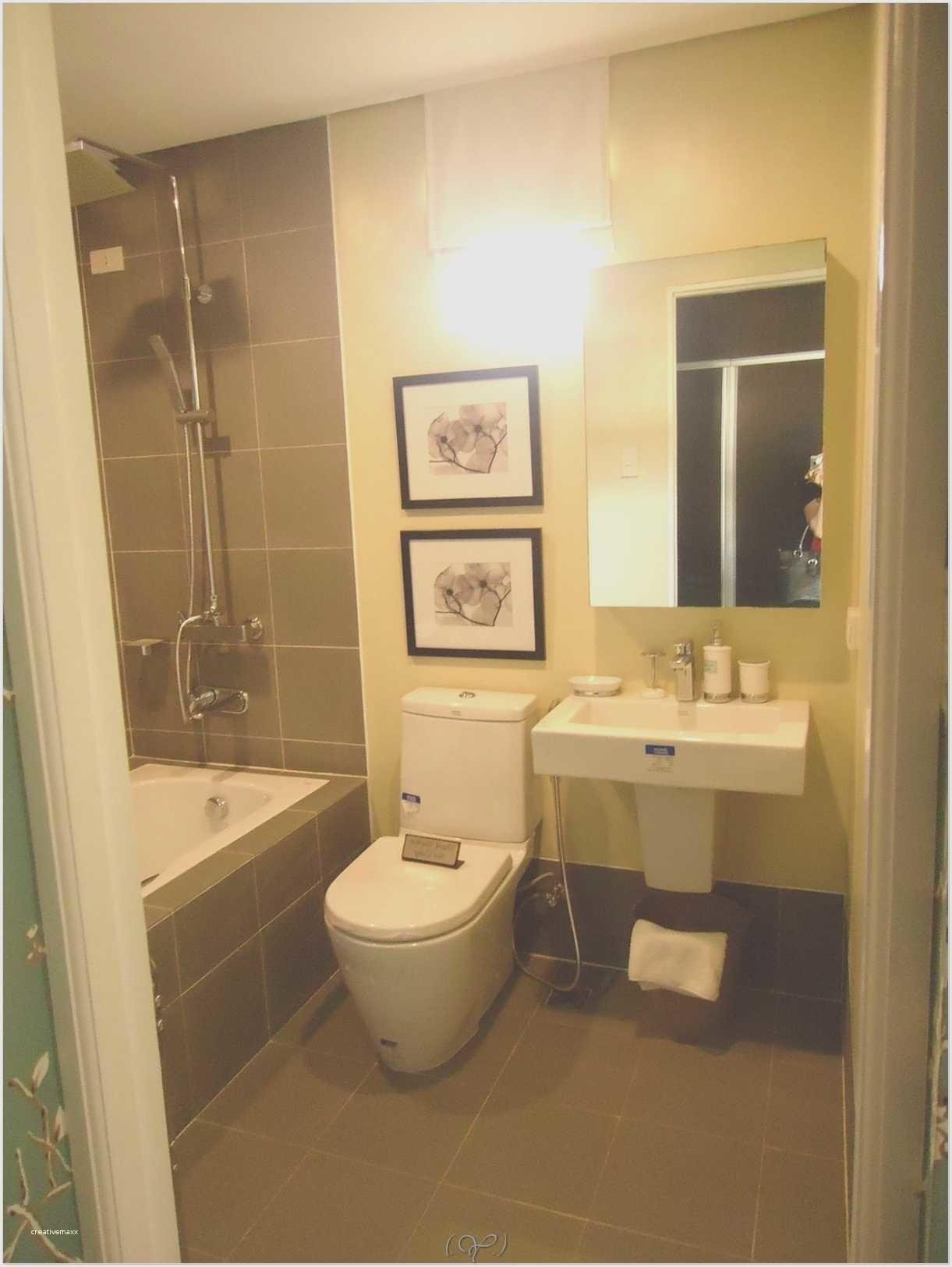 Apartment Bathroom Decorating Ideas Budget New
