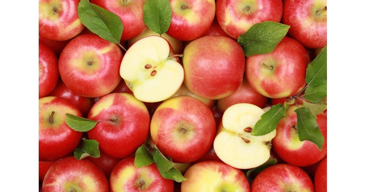 Apple Delicious Diy Recipes Featuring Your Favourite