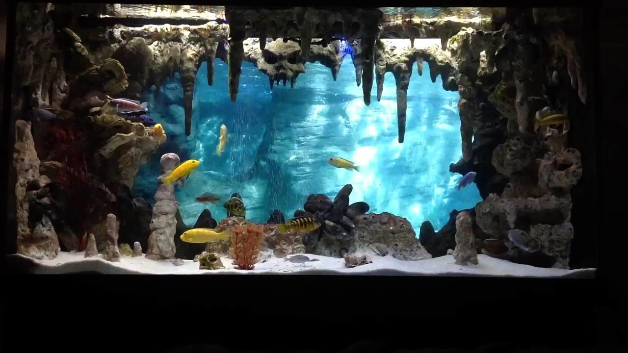 Aquarium Dream Fish Tank