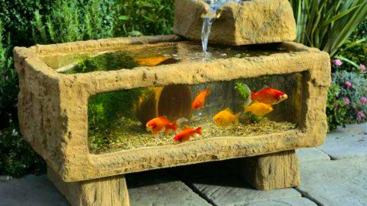 Aquarium Fish Ideas 2017 Creative Home Design