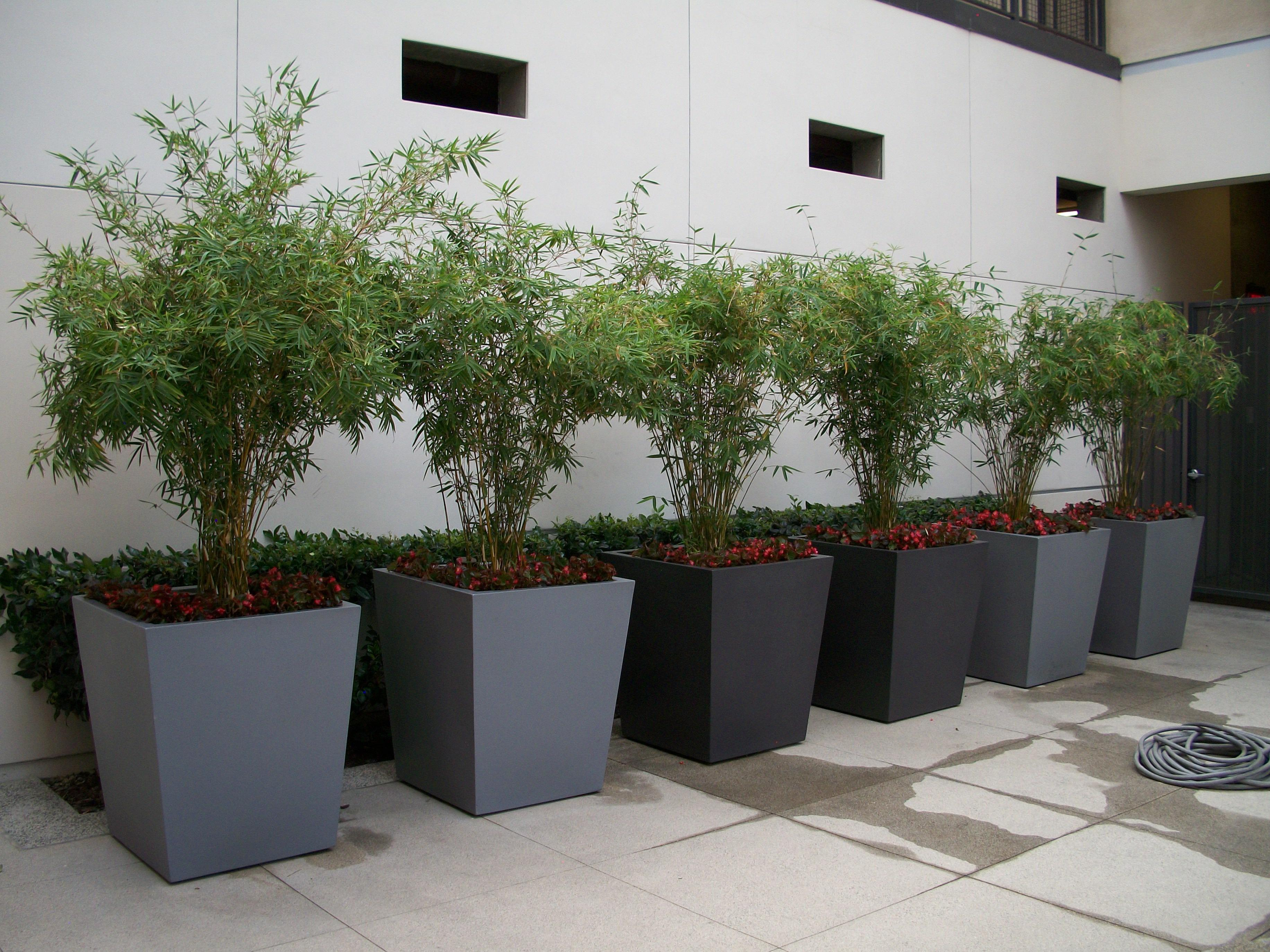 Architectural Planters Award Winning Contemporary