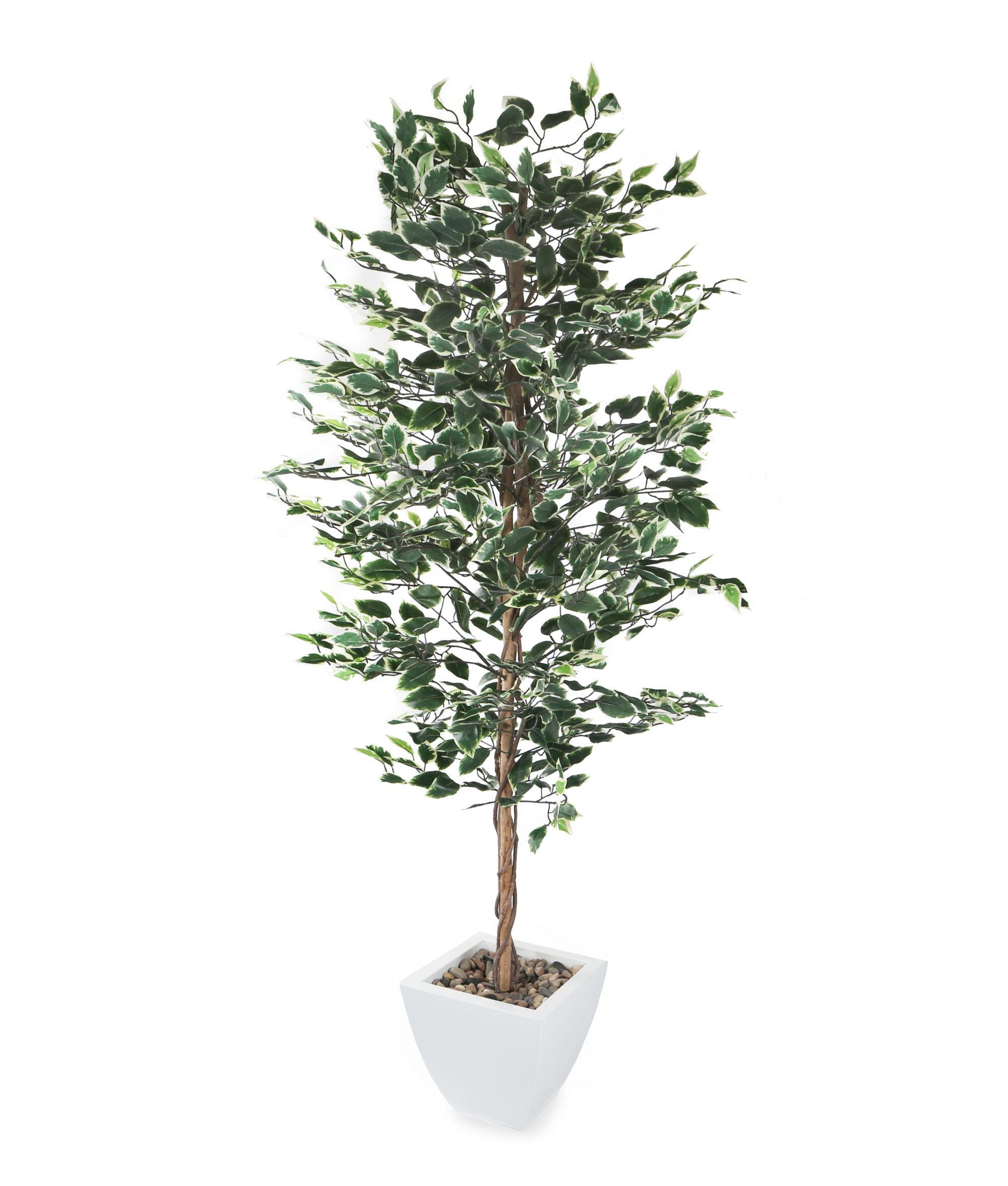 Artificial 6ft Weeping Fig Tree Ficus Fake