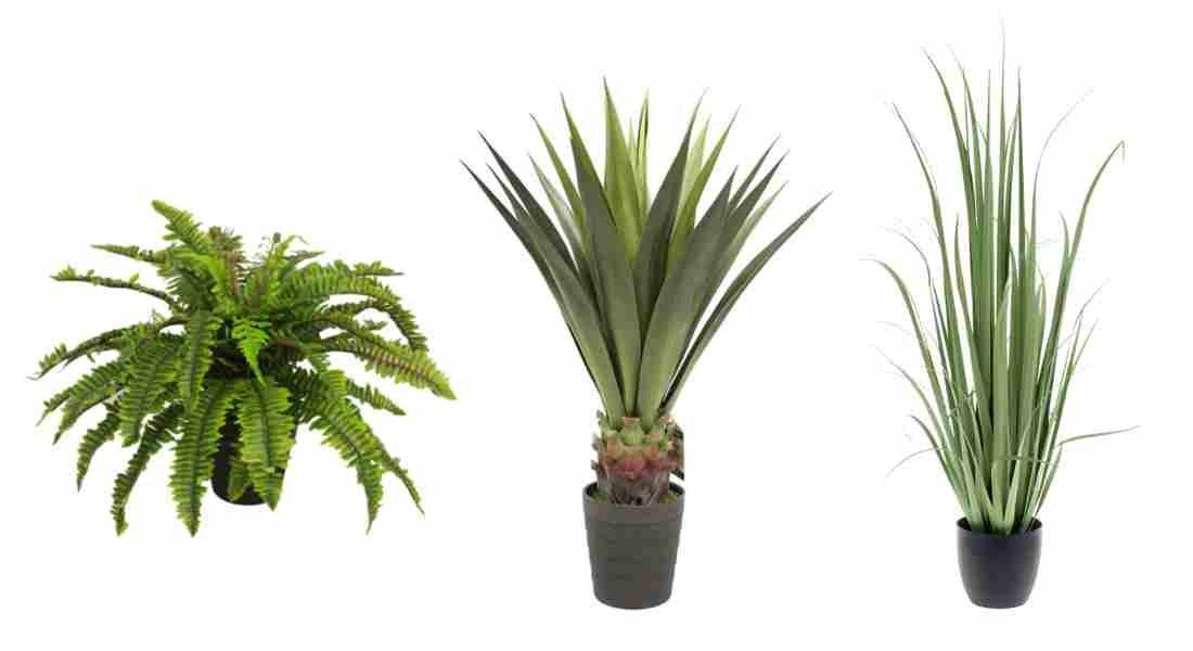Artificial Plants Buy Quality