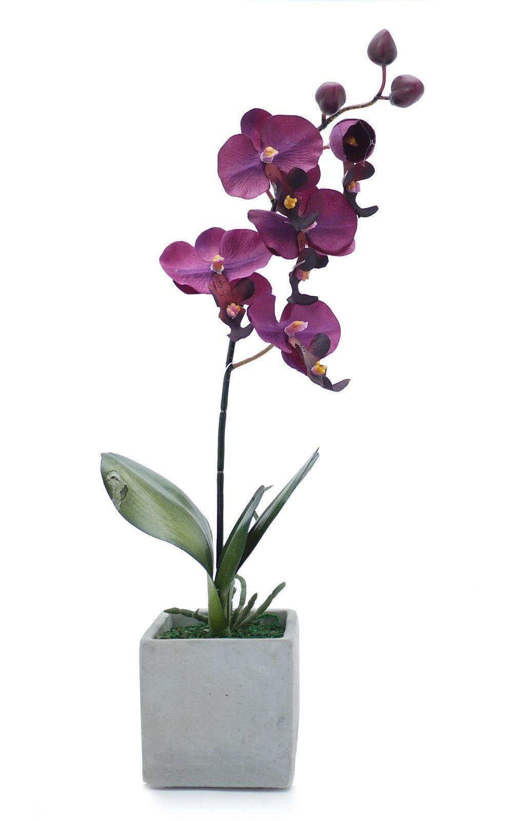 Artificial Potted Plant Orchid Stone Pot Houseplant