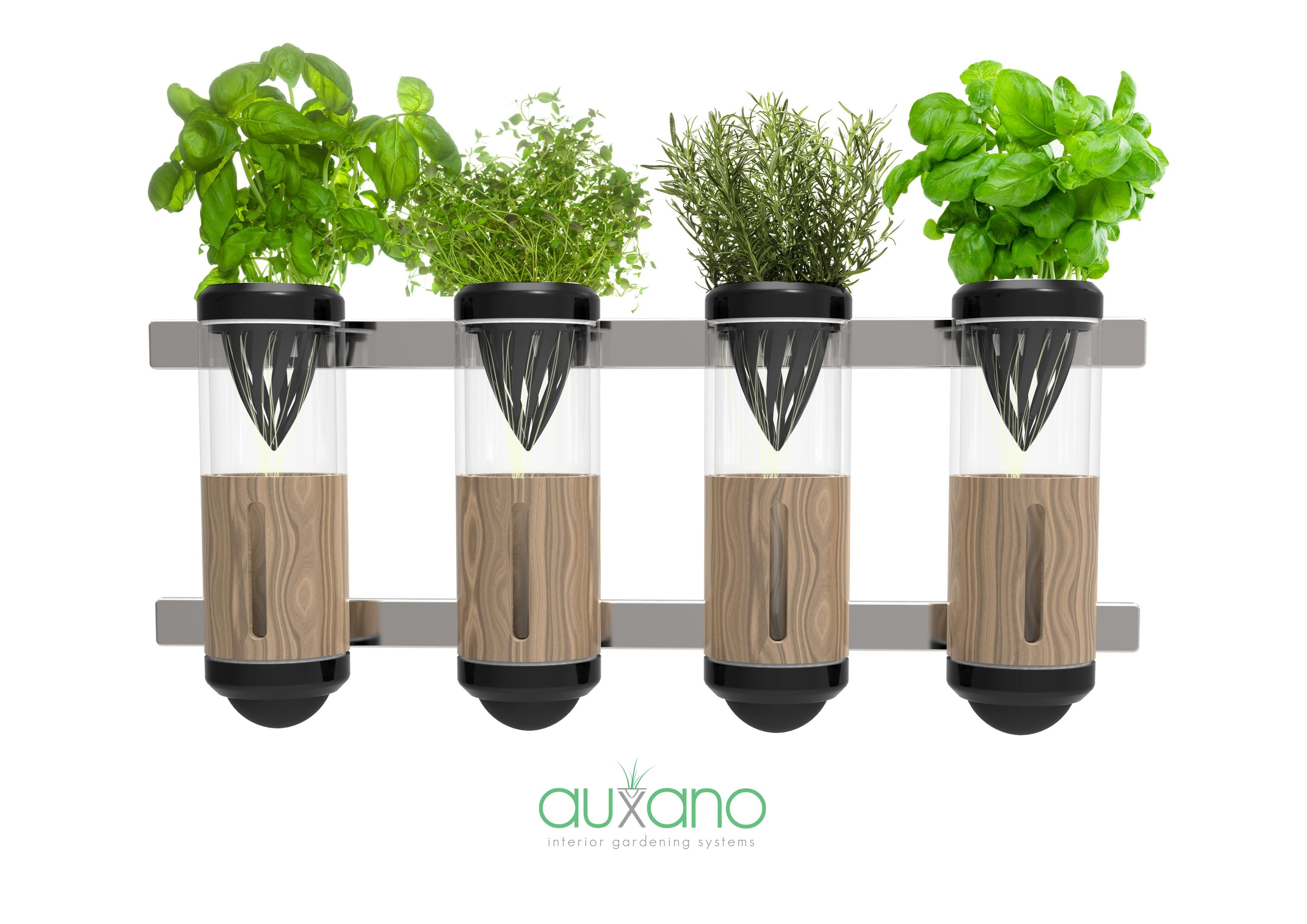 Auxano Hydroponic Vegetable Herb Grower Philip