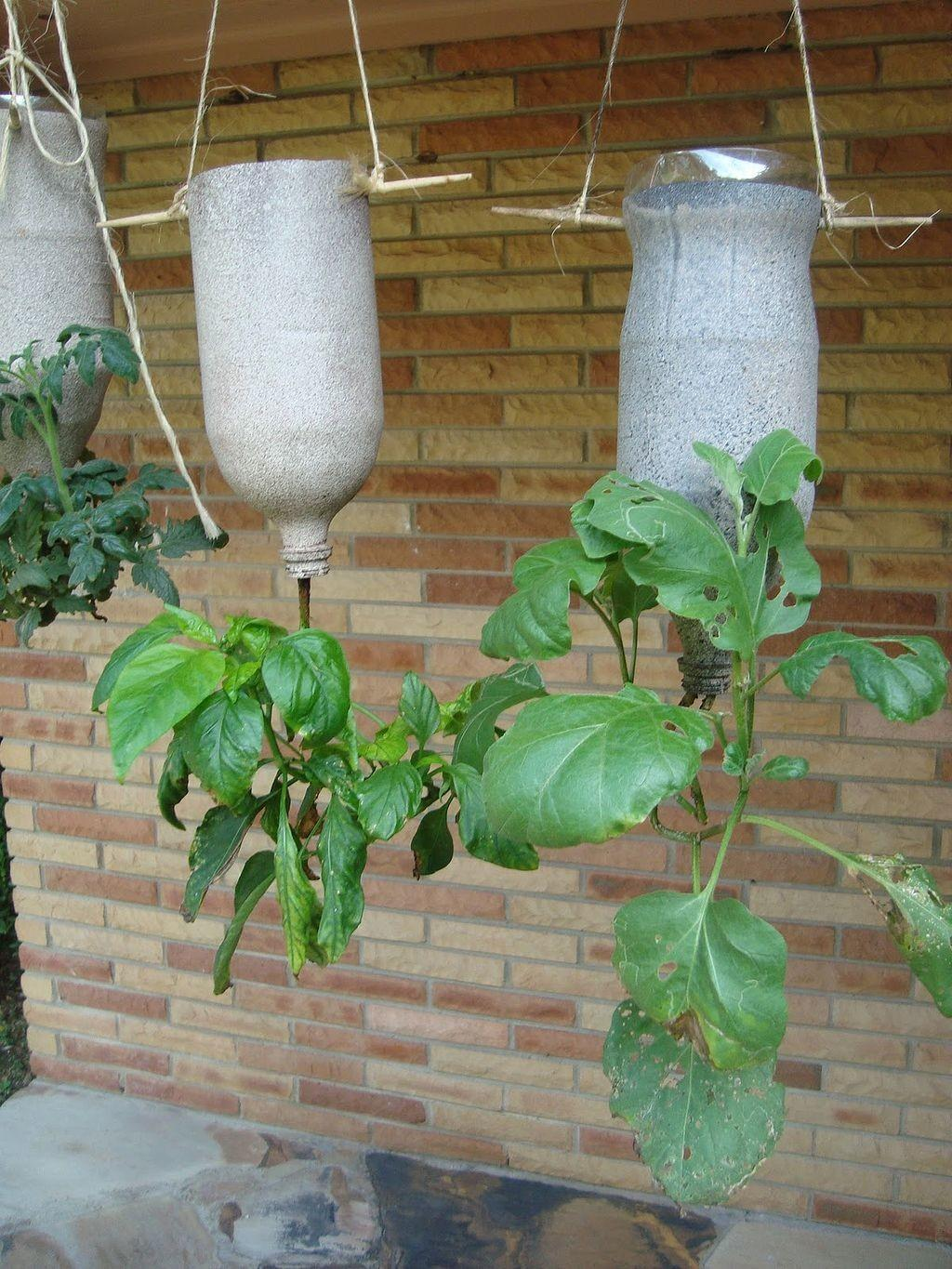 Awesome Hanging Garden Planter Ideas