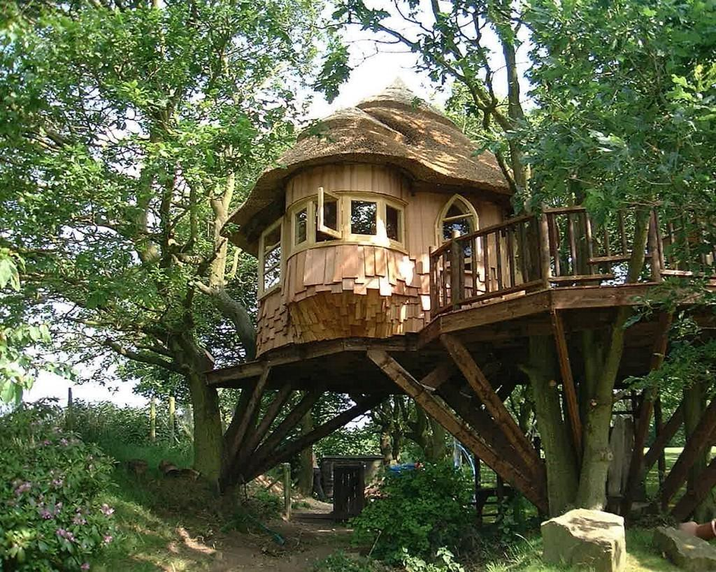 Backyard Awesome Treehouse Designs Plus Minecraft