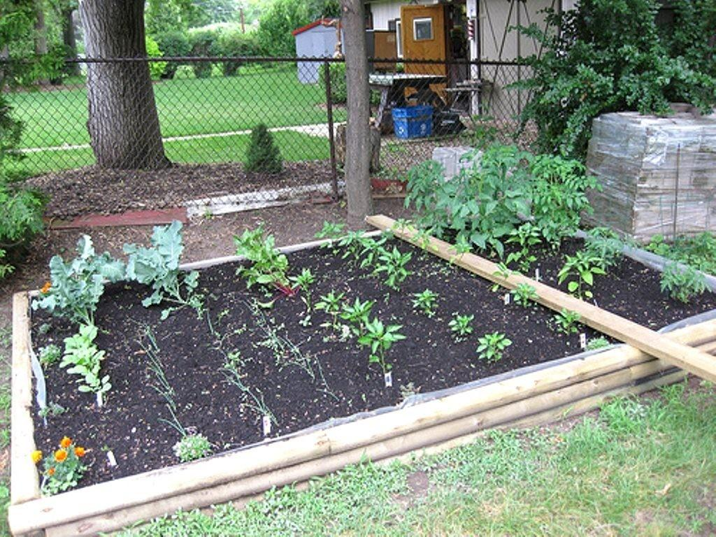 Backyard Vegetable Garden Designs 1436