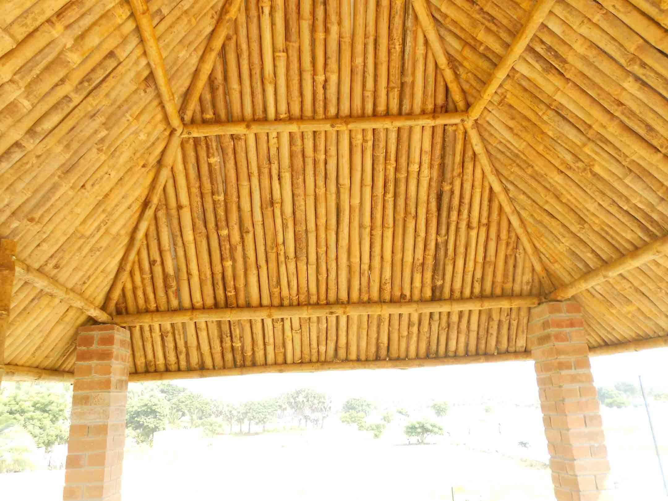 Bamboo Ceiling False