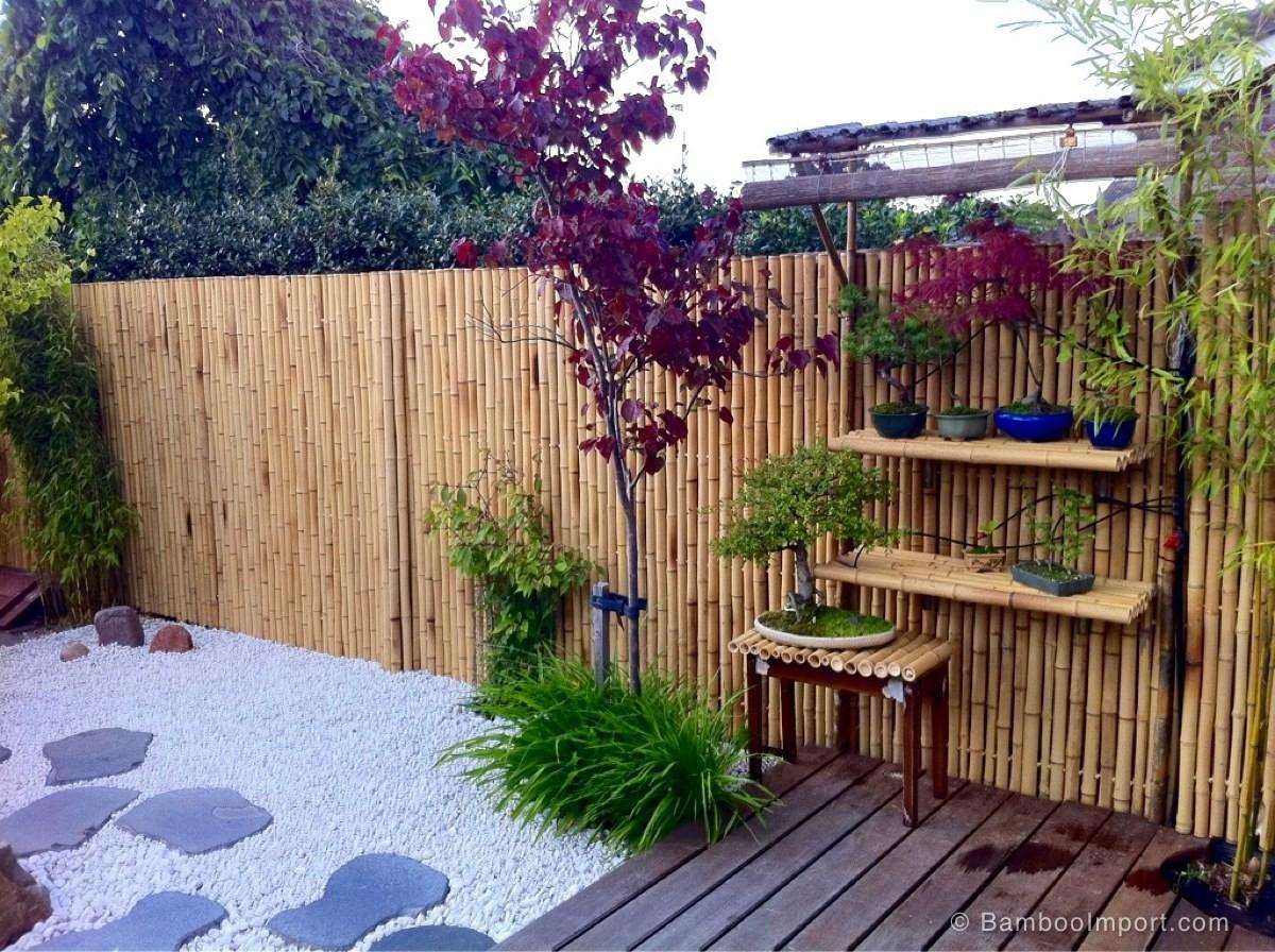 Bamboo Privacy Fence Backyard Best Home Decor Ideas