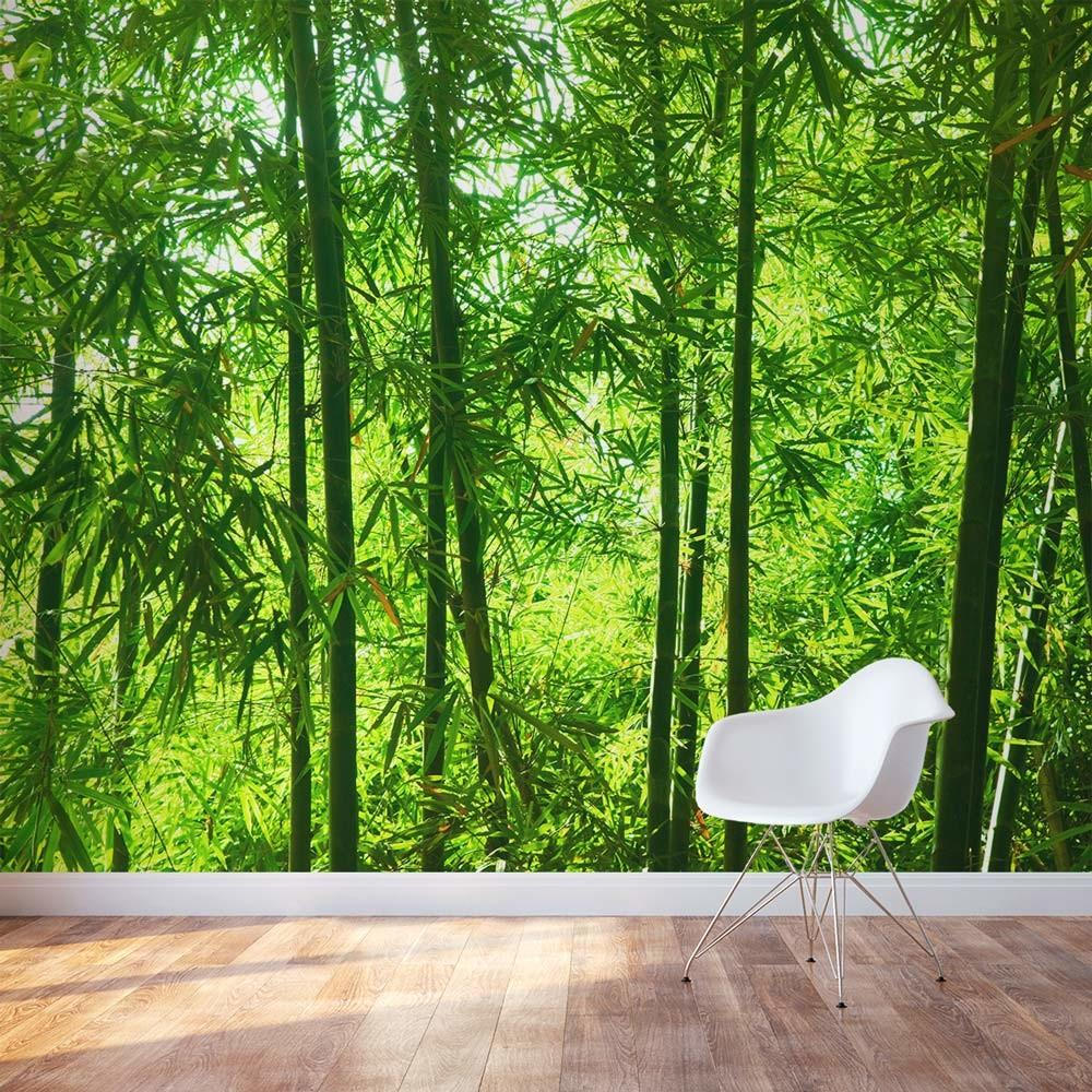 Bamboo Wall Mural Forest Wallums