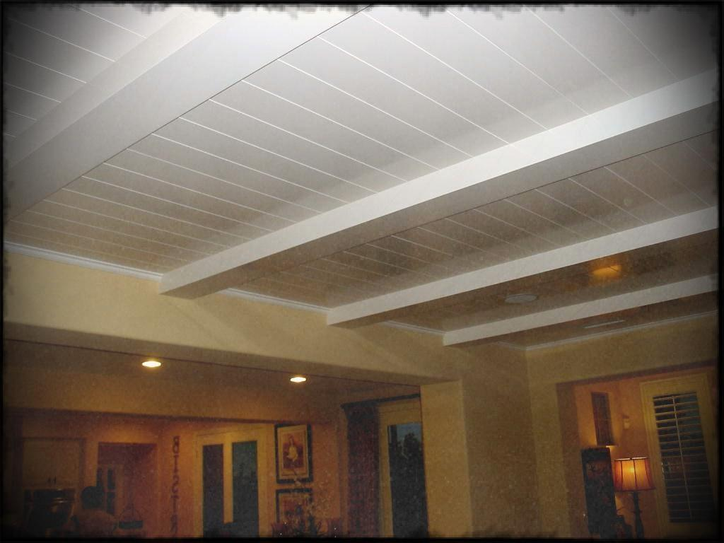 Basement Ceiling Tiles Project Modern Design