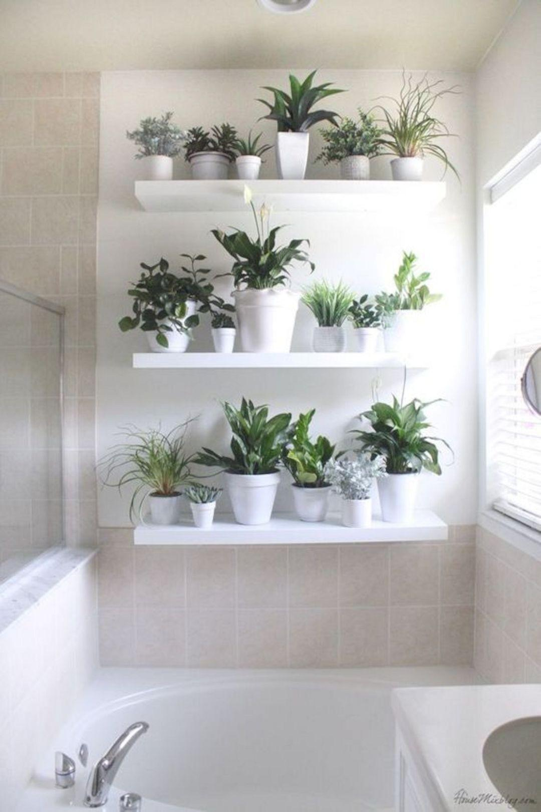 Bathroom Plant Wall