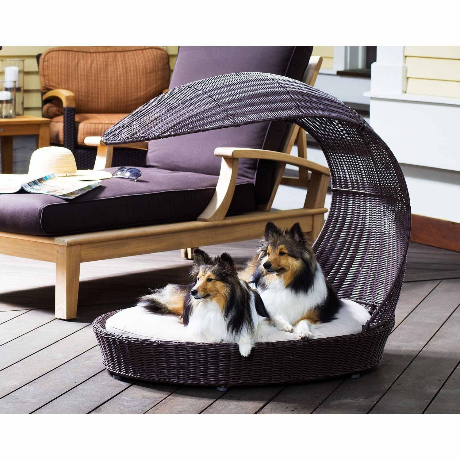 Beautiful Dog Beds Instantly Enhance Your