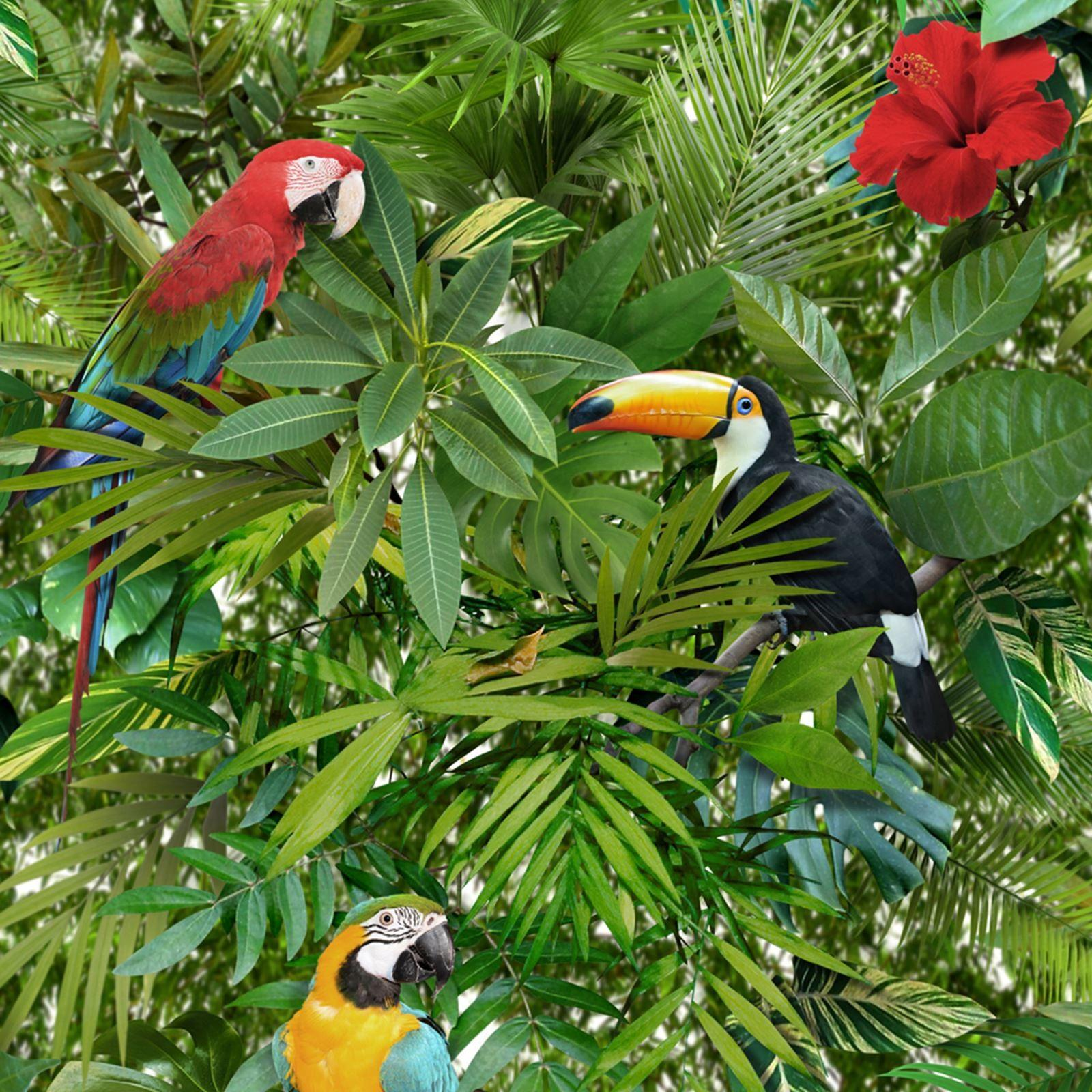 Beautiful Exotic Tropical Birds Themed