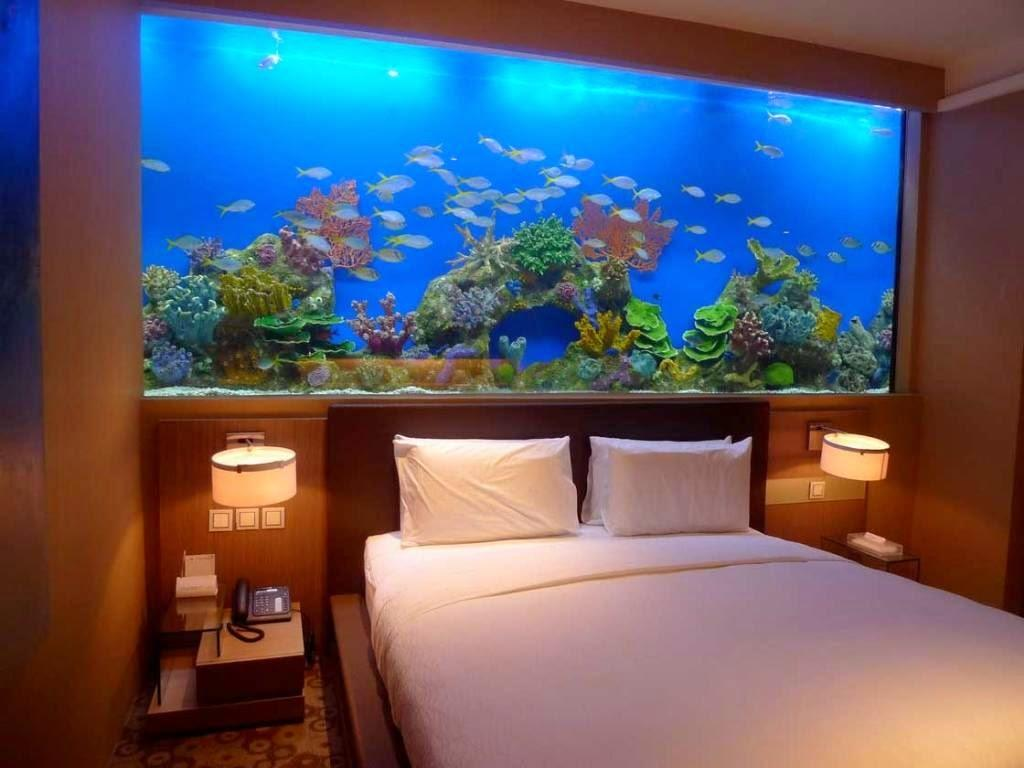 Fabulous Home Aquarium Designs That