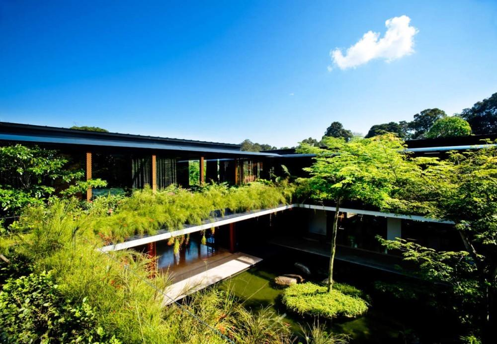 Beautiful Houses Luxury Sustainable Green Roof House