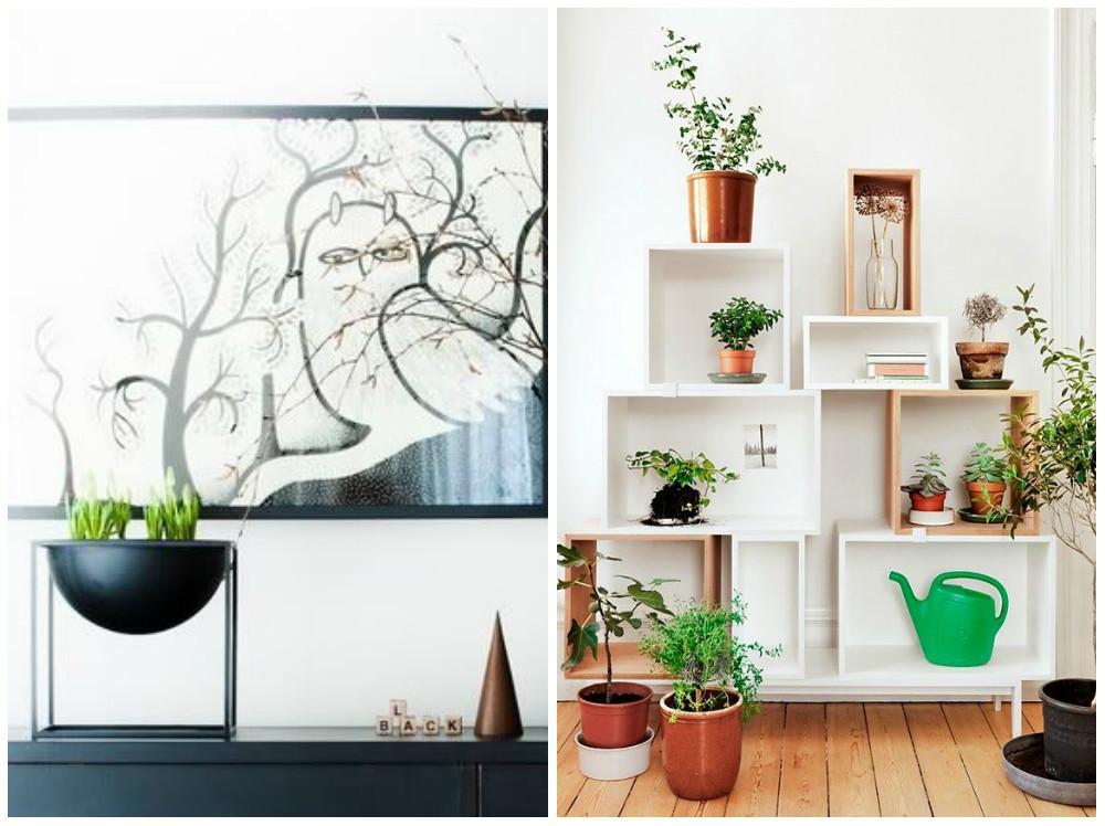 Beautiful Indoor House Plants Ideas Home Interior Design