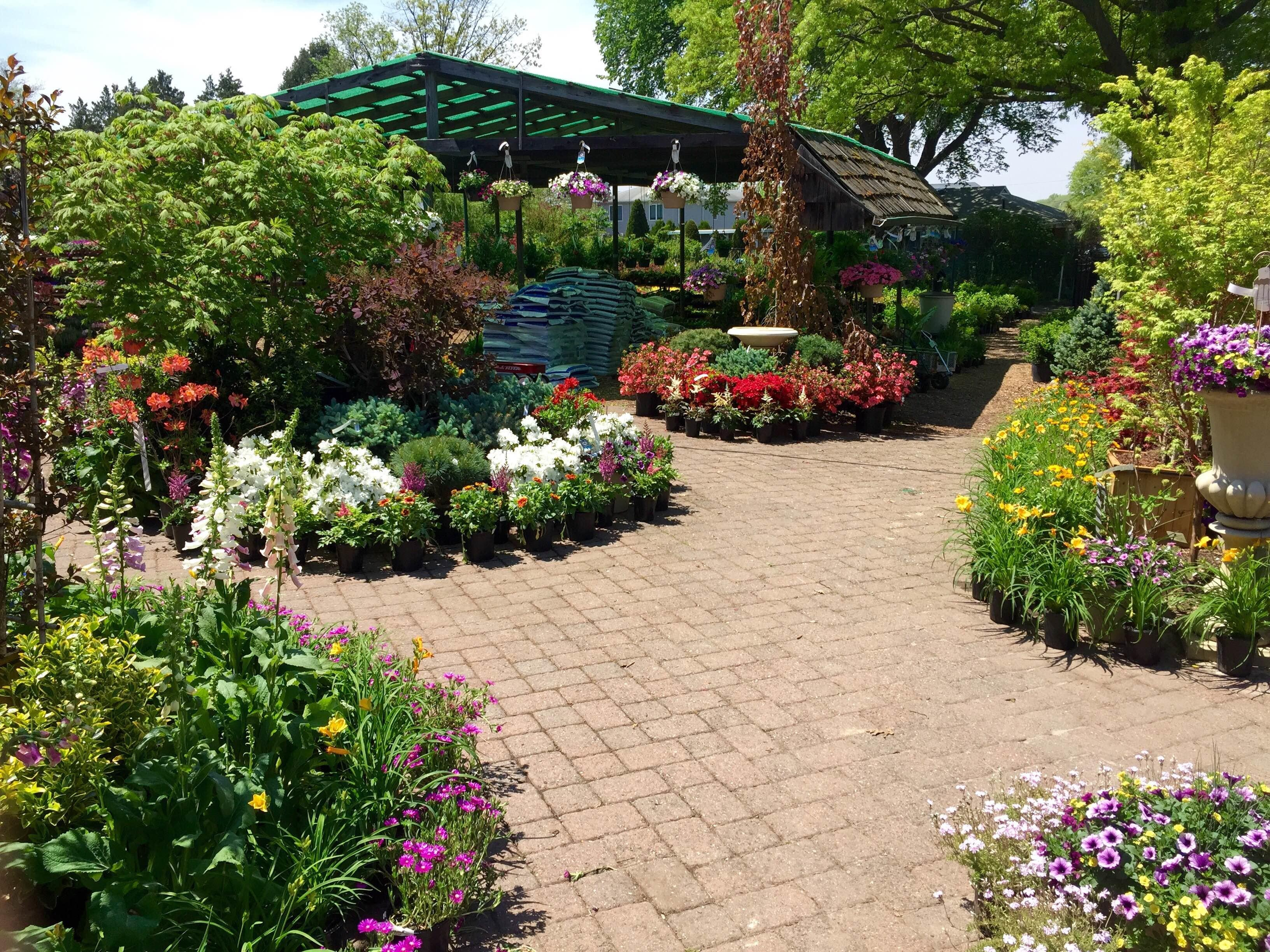 Beautiful Spring Day Wiesner Bros Nursery Inc
