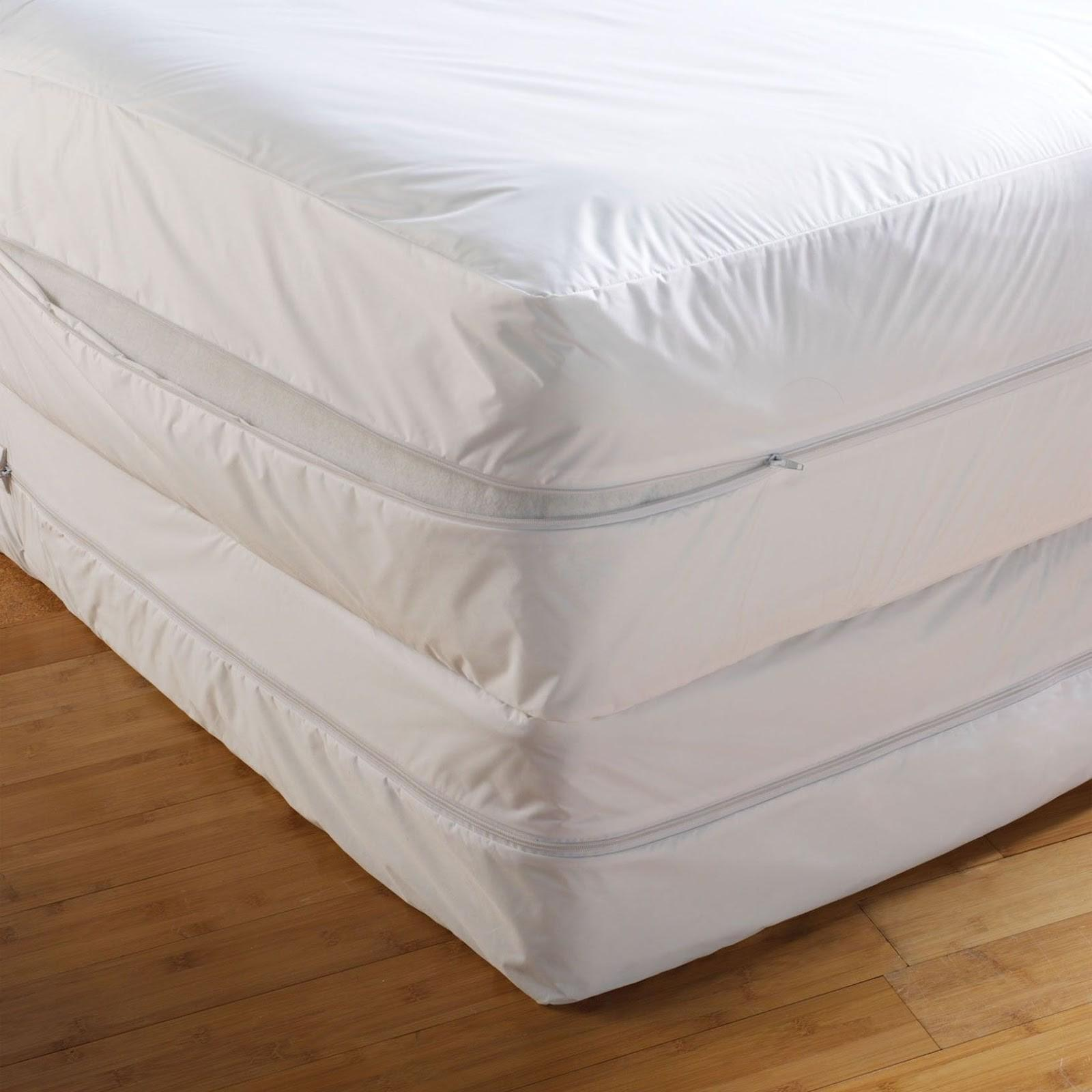 Bed Bug Mattress Cover Best Defense Preventing