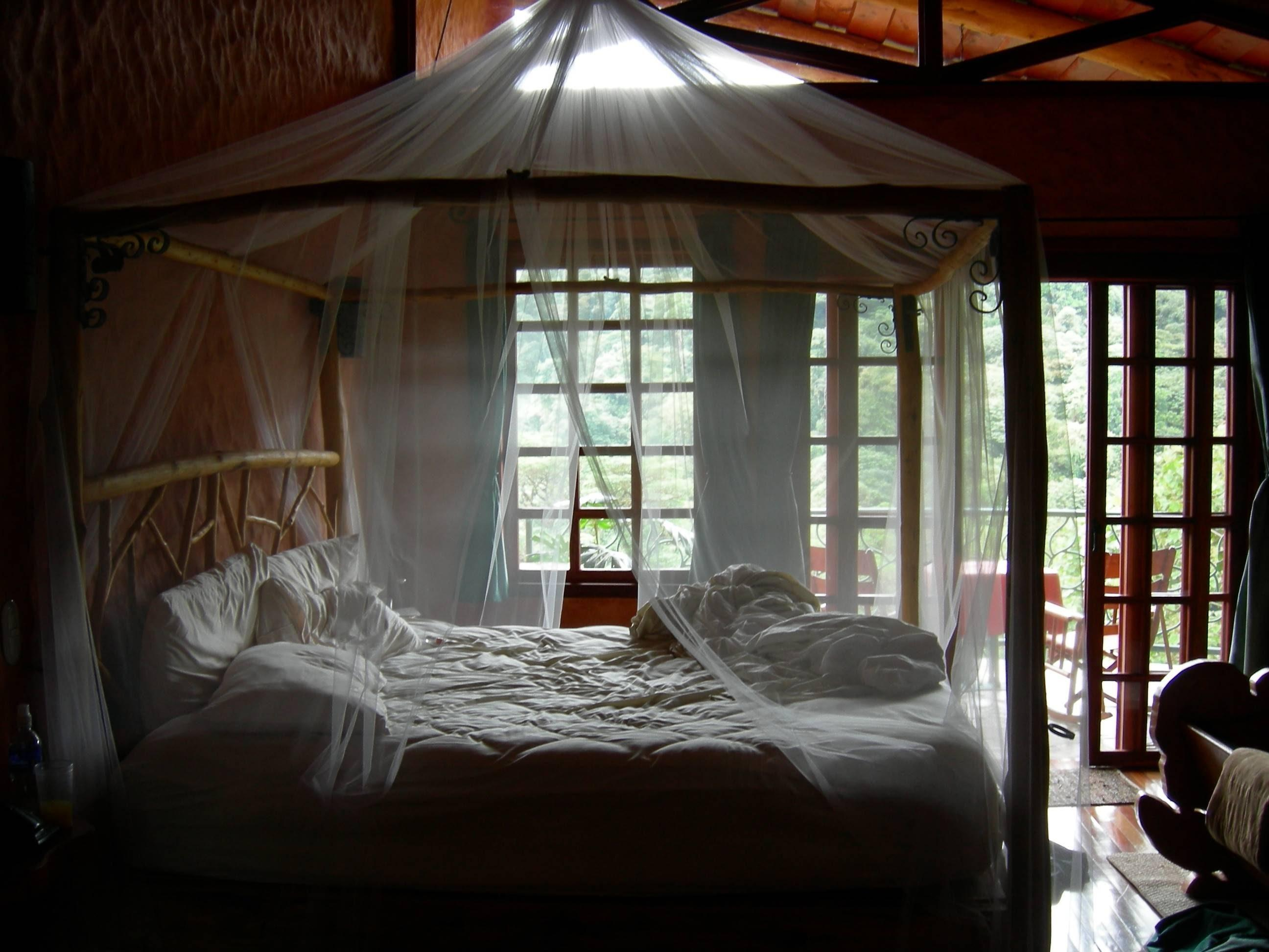 Bedroom Extraordinary Canopy Bed Ideas Vie Decor Then