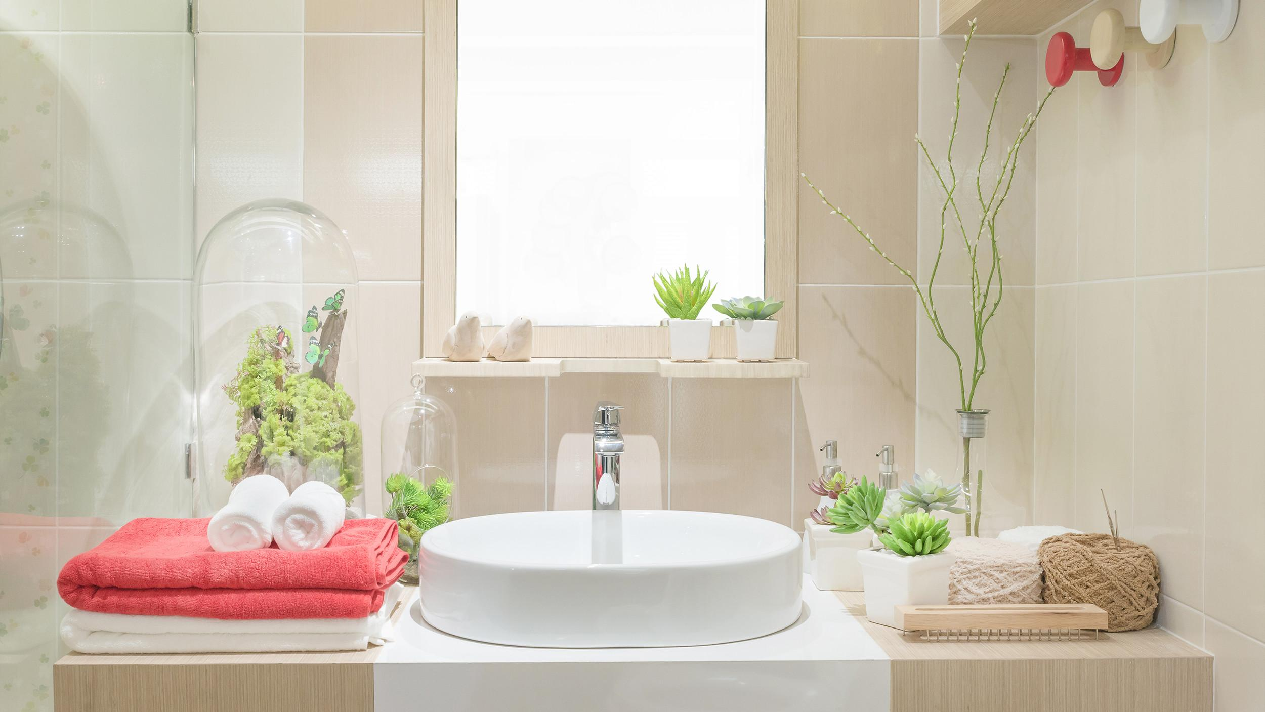 Benefits Bathroom Shower Plants Today