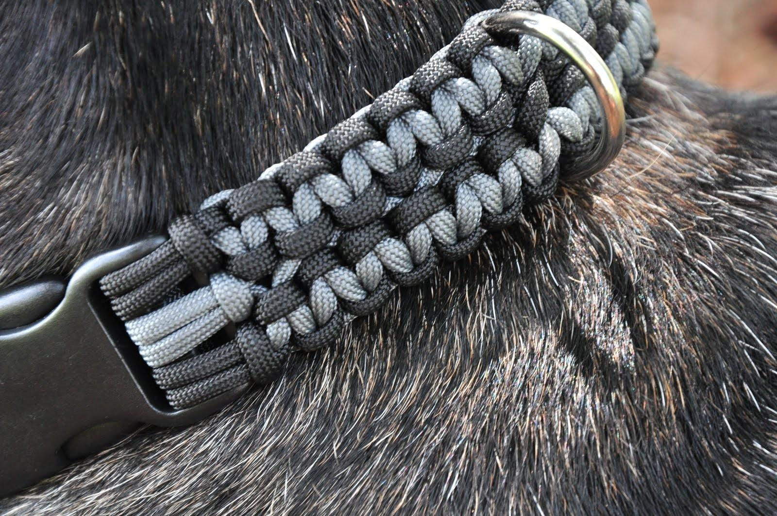 Benefits Paracord Dog Collars Craftedcords