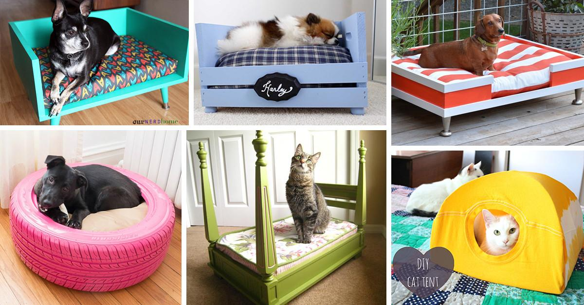 Best Diy Pet Bed Ideas Designs 2018