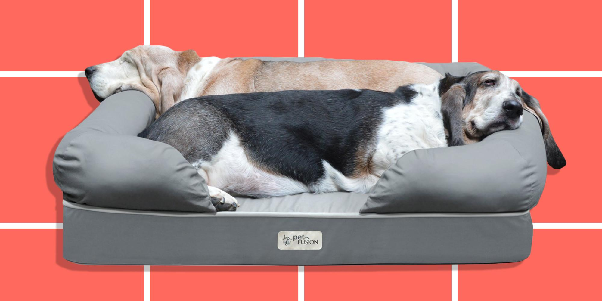 Best Pet Beds Dogs Cats Chic Comfy