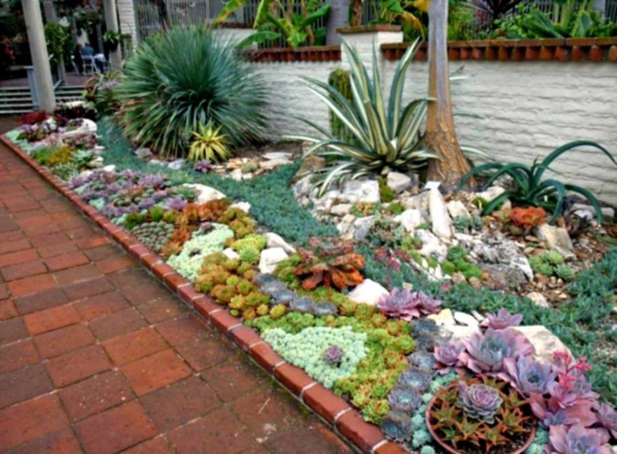 Best Succulent Rock Garden Ideas Home Design