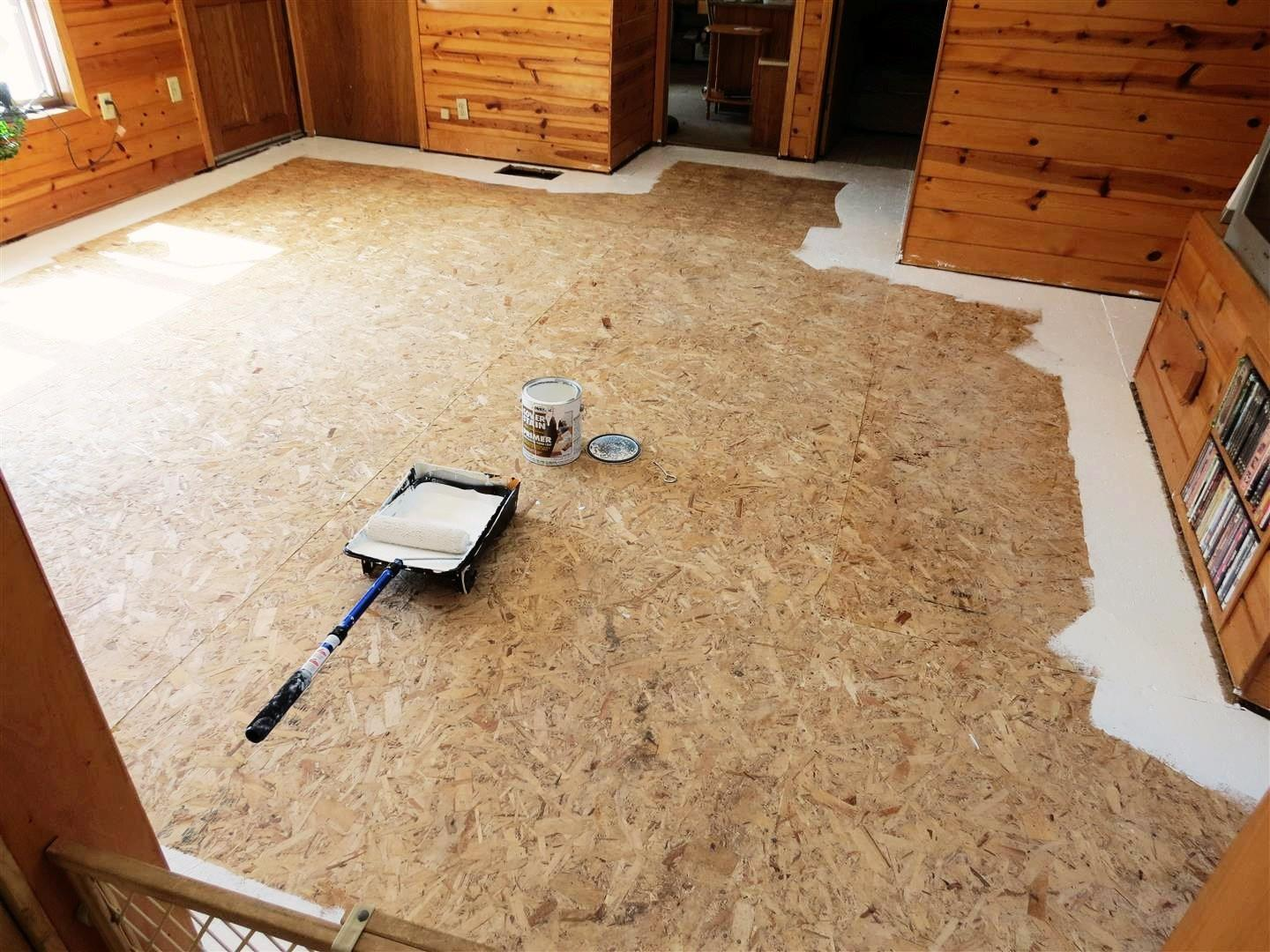 Black Spruce Hound Painted Plywood Floors Revisited