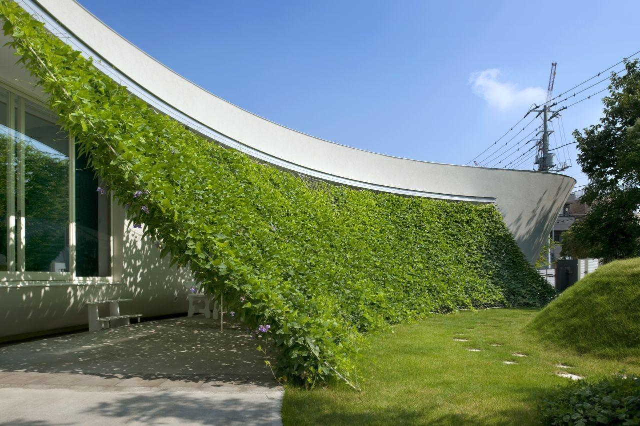 Blooming Buildings Bring Nature Into City